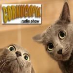 Podcast 13